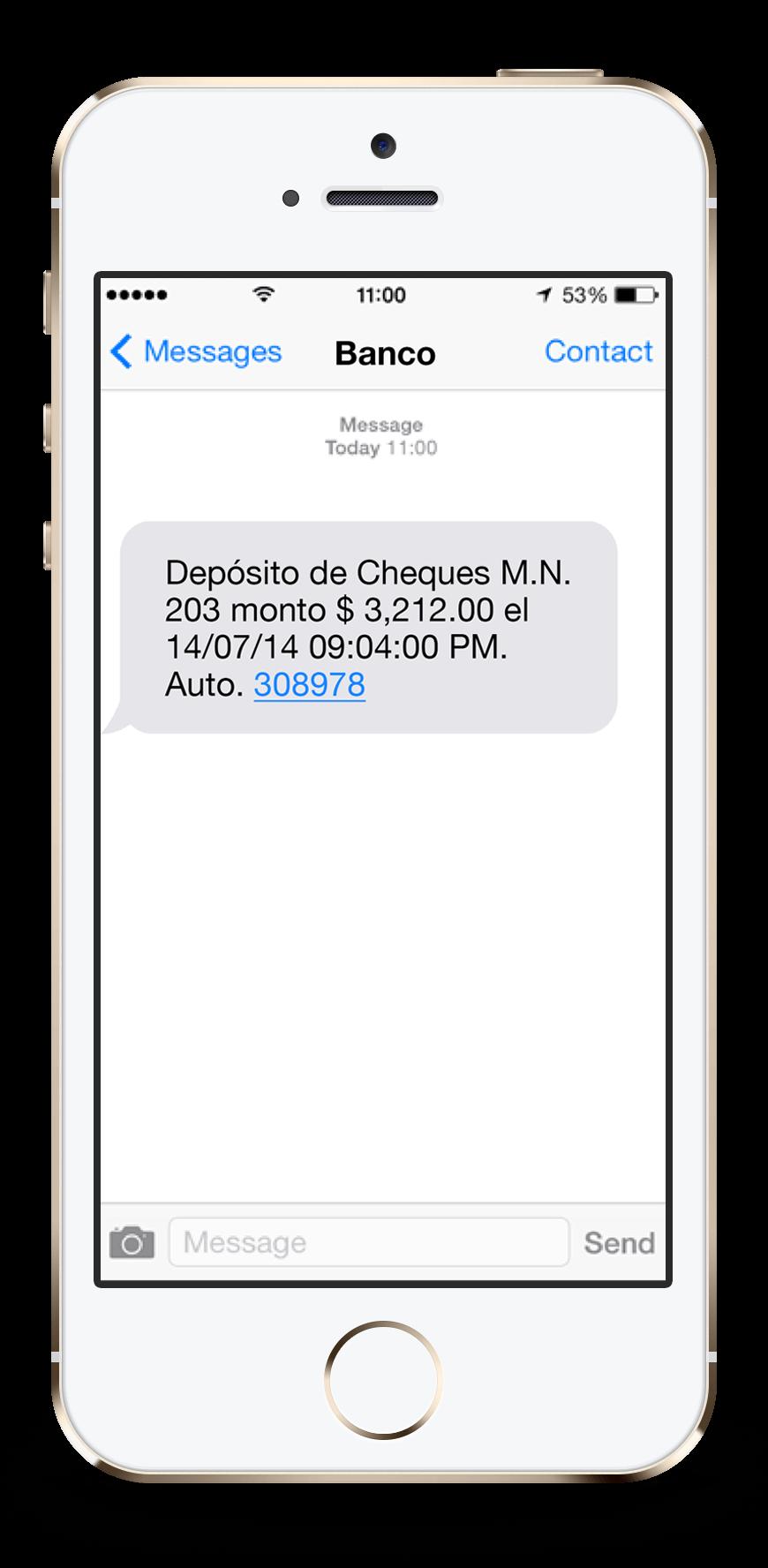 SMS Enmascarado